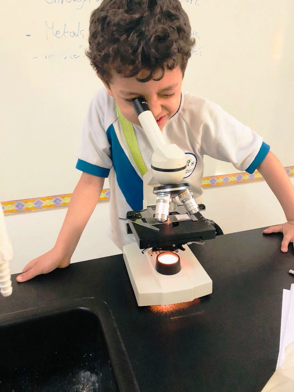 Grade 1A and 1D: Science Activity